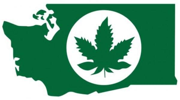 Washington state cannabis oversupply spurs calls for change